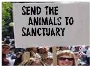 protest animals in zoos 1